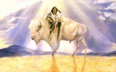 ~ Mujer Cría de Búfalo Blanco ~